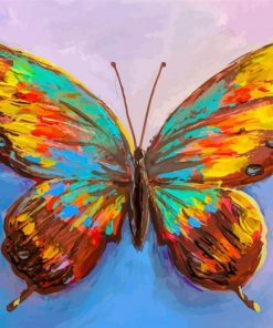 Colorful Butterfly paint by number