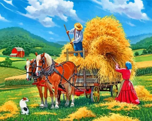 Hay Farm Paint by numbers