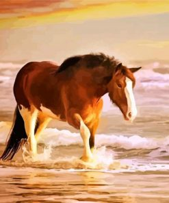 Horse In Sea Paint by numbers