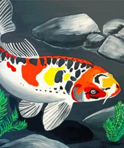 Koi Carp Fish Paint by numbers