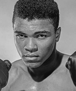 Young-Muhammad-Ali-paint-by-number