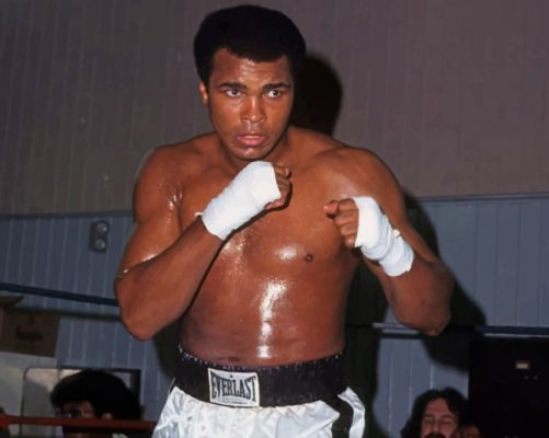 the-boxer-muhammad-ali-paint-by-number