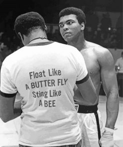 the-legend-Muhammad-ali-paint-by-numbers
