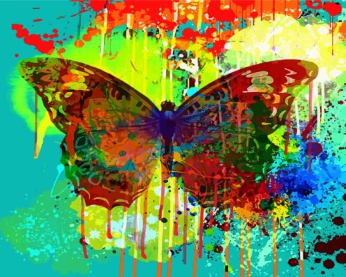 Abstract Splash Butterfly Paint by numbers