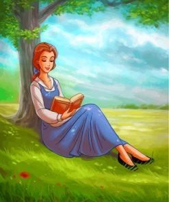 Disney Belle Princess Paint by numbers