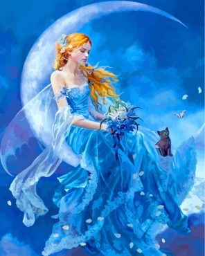 Moon Fairy Paint by numbers