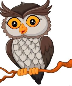 Owl Bird Paint by numbers