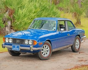 blue-triumph-stag-paint-by-numbers