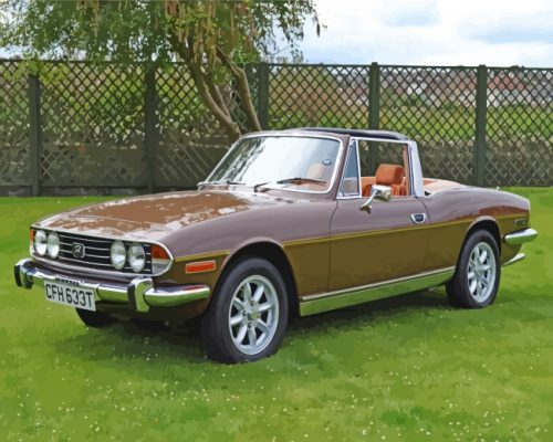 brown-triumph-stag-paint-by-numbers