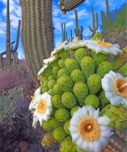 cactus-paint-by-numbers