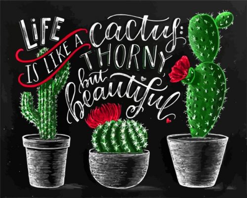 chalkboard-art-cactus-paint-by-numbers