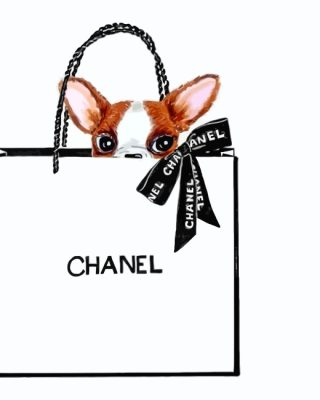 chanel-chihuahua-paint-by-numbers