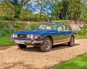 cool-triumph-stag-paint-by-numbers