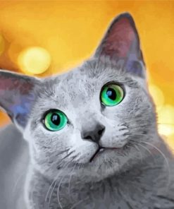 cute-Russian-Blue-cat-paint-by-numbers