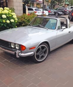 grey-triumph-stag-paint-by-numbers