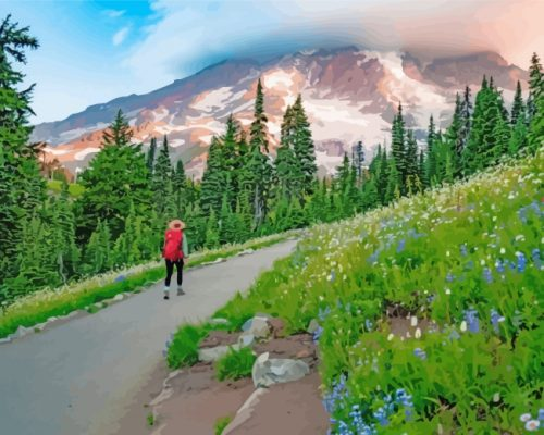mount-rainier-national-park-paint-by-numbers