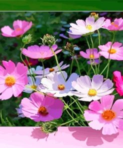 pink-flowers-paint-by-numbers