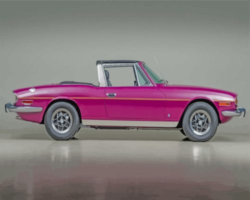 purple-triumph-stag-paint-by-numbers