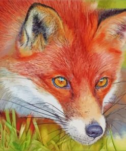 red-fox-paint-by-numbers