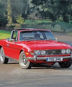 triumph-stag-paint-by-numbers