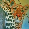 wild-tiger-paint-by-numbers