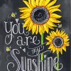 You Are My Sunshine Paint by numbers