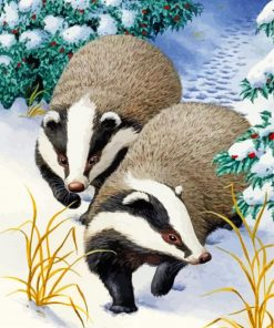 Badgers Animals In Snow Paint by numbers