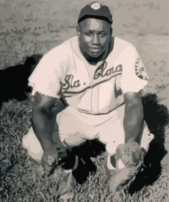 Baseball Player Josh Gibson Paint by numbers