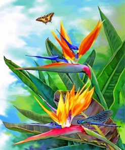 Bird Of Paradise And Butterfly Paint by numbers