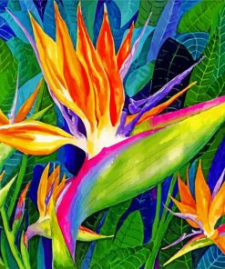 Bird Of Paradise Art Paint by numbers