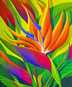 Bird Of Paradise Flower Paint by numbers