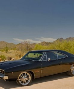 Black-Dodge-Car-In-Nature-paint-by-numbers