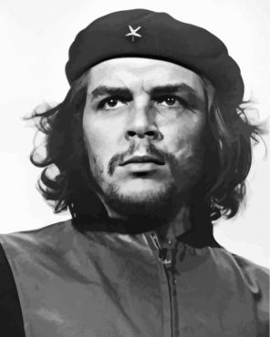 Black And White Che Guevara Paint by numbers