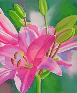 Blooming Pink Lilies Paint by numbers