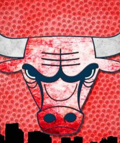Chicago Bulls Logo Paint by numbers