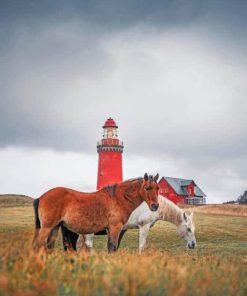 Denmark-Bovbjerg-Lighthouse-paint-by-number