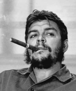 Former Politician Che Guevara Paint by numbers