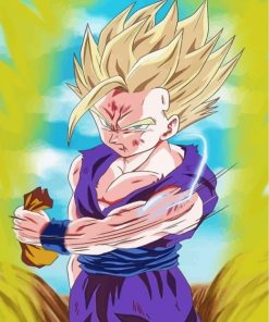 Gohan Dragon Ball Paint by numbers