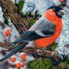 Bullfinch Bird Paint by numbers