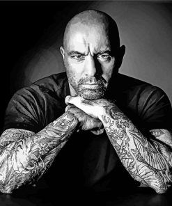 Joe-Rogan-black-and-white-paint-by-numbers