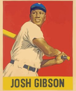 Josh Gibson Illustration Paint by numbers