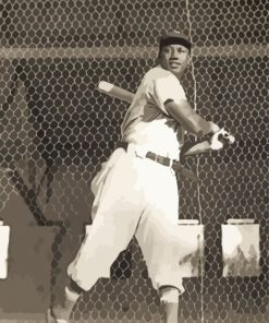 Josh Gibson Player Black And White Paint by numbers