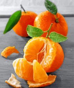 Mandarine Fruit Paint by numbers