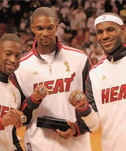 Miami Heat Basketball Players paint by numbers