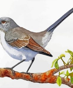 Mockingbird On Stick Paint by numbers