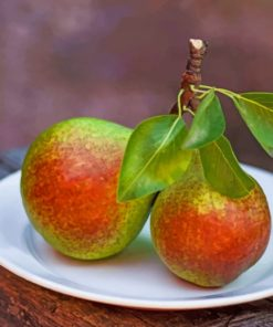 Pears-With-Leaves-Fruits