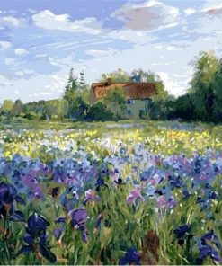 Iris Flowers Field Paint by numbers