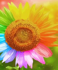 Rainbow Sunflower Paint by numbers
