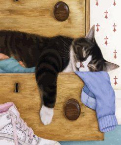 Sleepy Cat Paint by numbers