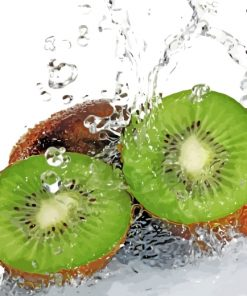 Sliced Kiwi In Water Paint by numbers